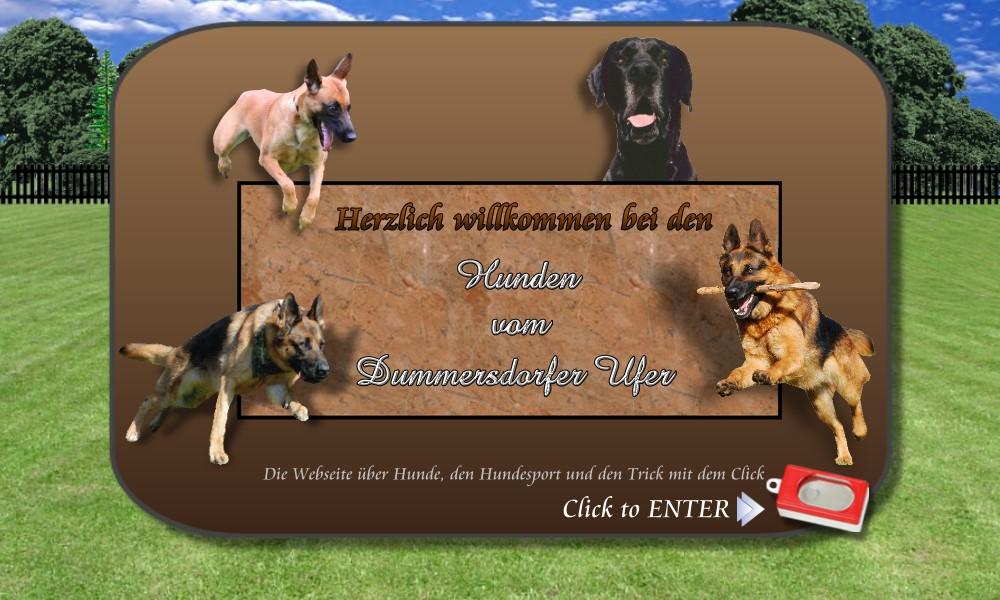 Dummersdorfer